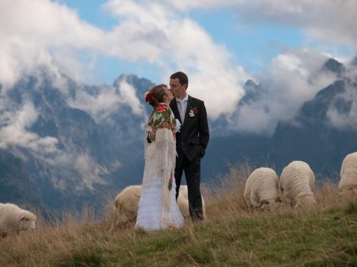 sesja ślubna na Rusinowej Polanie